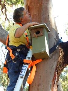 Installing Wayne Wildlife boxes Cushnie LC
