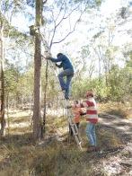 20160709 installing Wildlife boxes Cushnie LC
