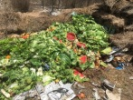LC swales soil creation project - green waste donations