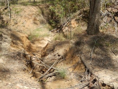 erosion area Cushnie Learning Centre