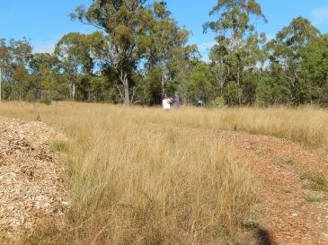 Before digging began lower site