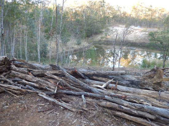 Swale made of piled up logs and tree stumps, another way to stop erosion