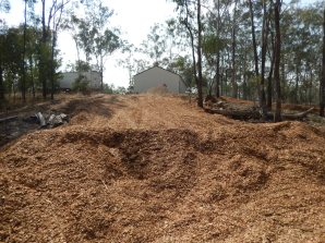 Woodchip filled holes and covering hillside
