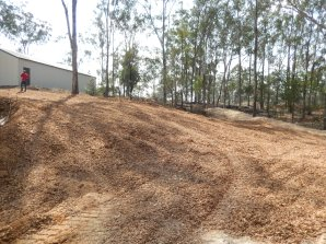 Woodchip covering hillside