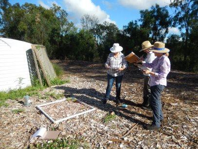 Participants observation activity debosia site