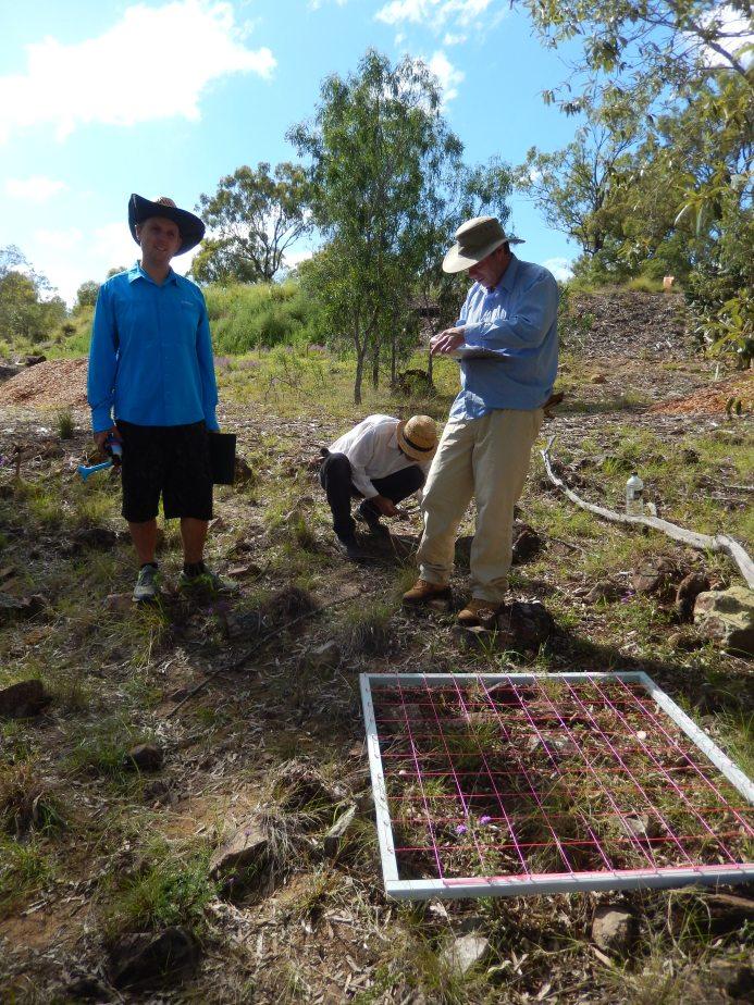 Participants observation activity rocky site