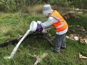 Di M. disposes of dirty mop water