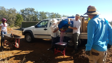 Juices from the greenwaste are loaded into a wheelbarrow to pour in pre-prepared holes