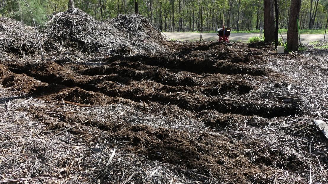 Hardwood mulch, February 2020.