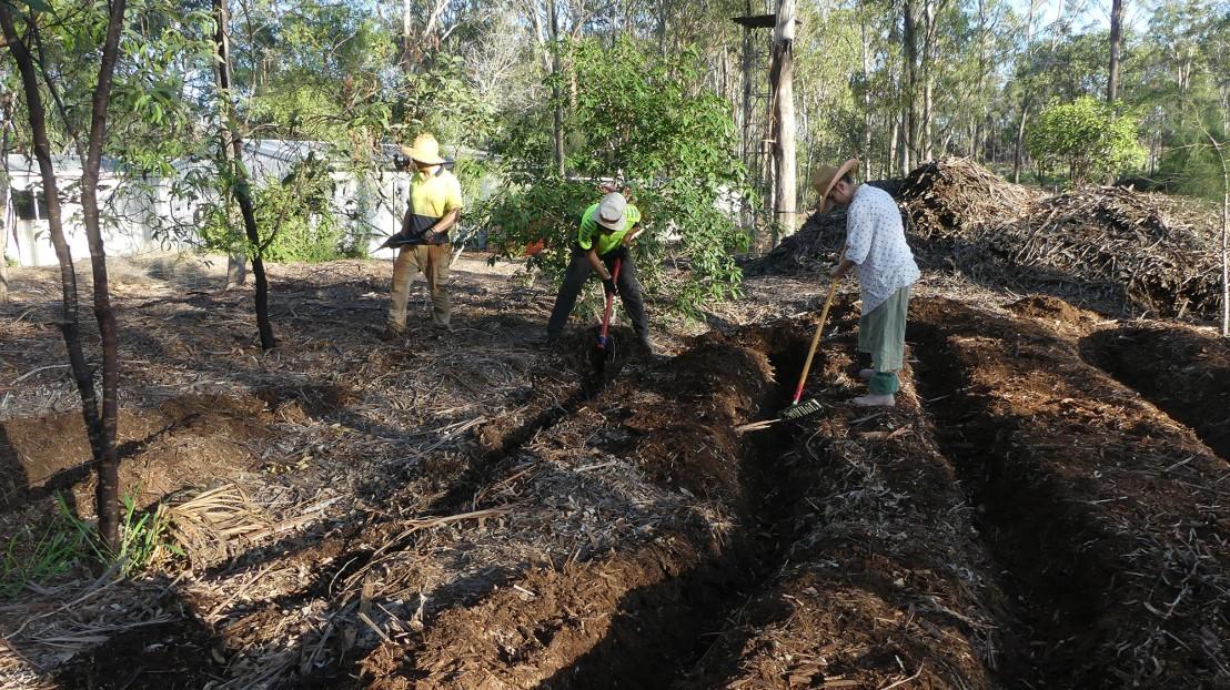Volunteers creating furrows to plant wattle seed