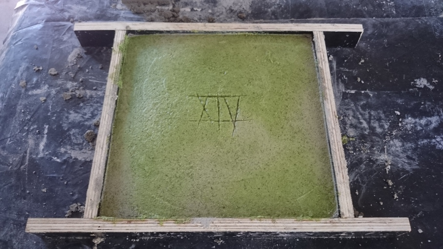 Paver with cactus pulp trowelled on top