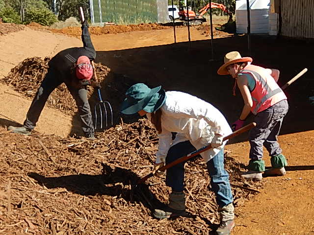 Volunteers layer mulch over the coconut fibre matting on the bank