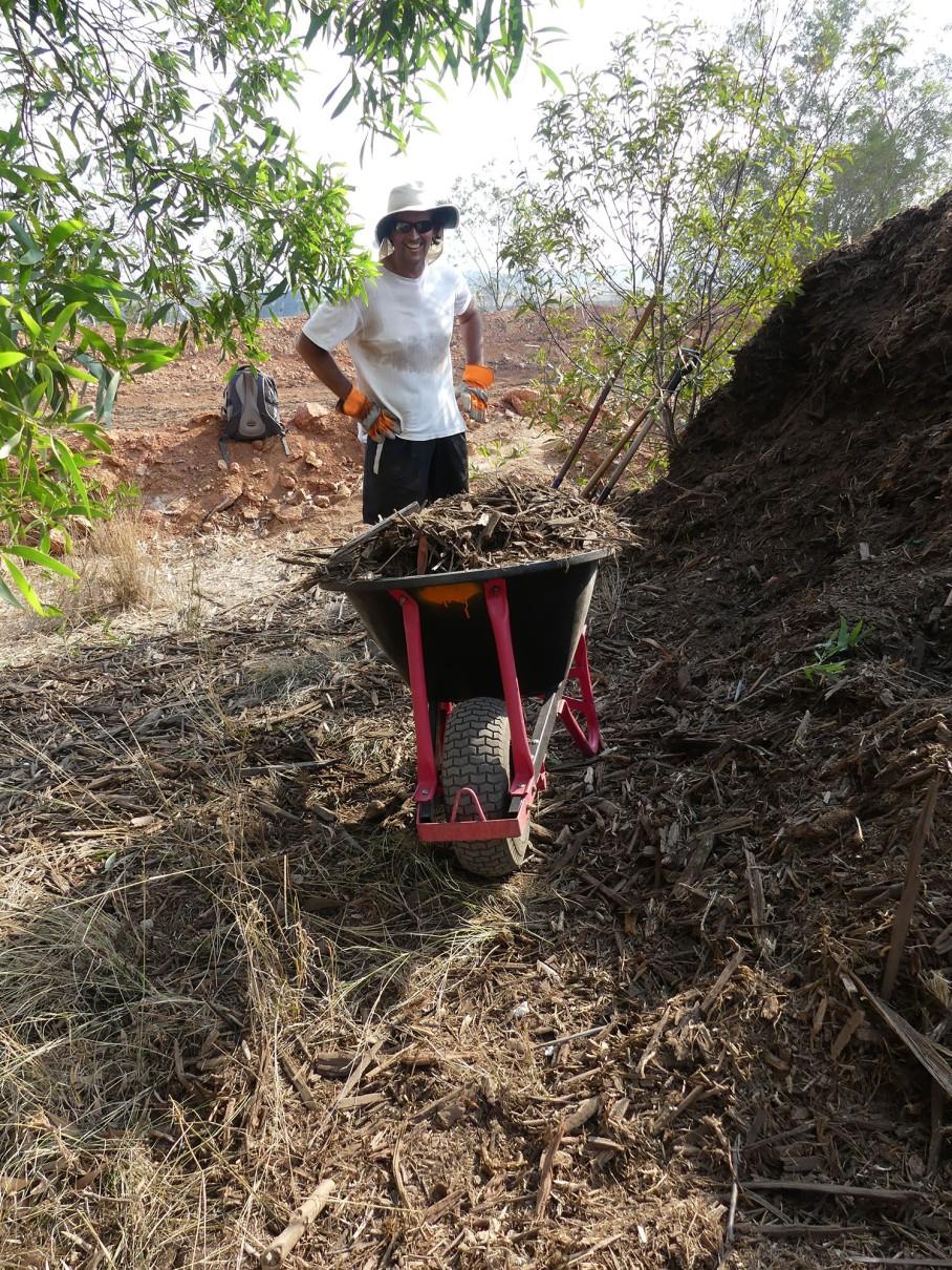Jesus loads wheelbarrows with woodchip