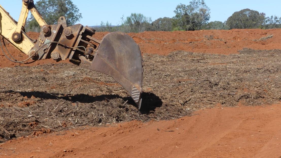 Mulch project: excavator spreads mulch, August 2020.
