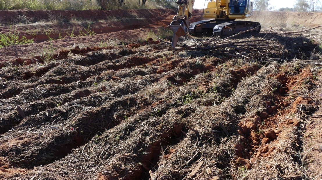 Mulch spread and ripped in terrace base, August 2020.