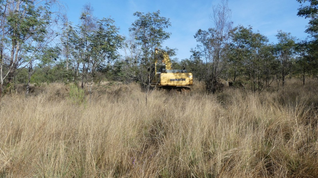 Excavator clears regrowth along gully line, September 2020.