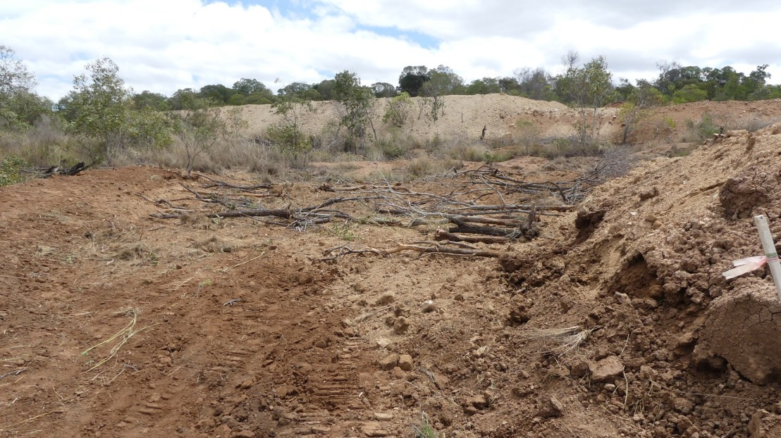 Top of gully after earthworks, September 2020.