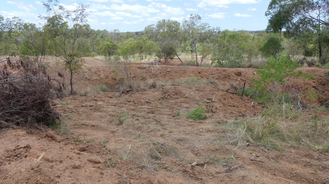 Gully line cleaned out, November 2020.